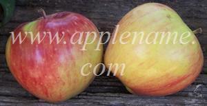 Delicious apple identification - Delicious