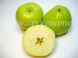 Ginger Gold apple identification - Ginger Gold