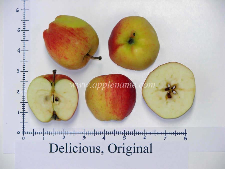 Delicious apple identification
