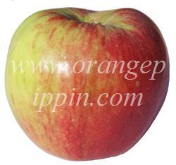 Jonathan apple identification