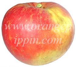 ad6d57508959 Kidd s Orange Red is named after James Hutton Kidd