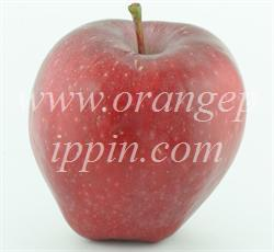 Apple - Red Delicious - tasting notes, identification, reviews