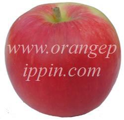 Sunrise Apple Sunrise Apple Identification